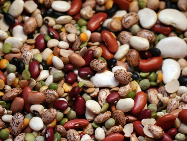 beans-01