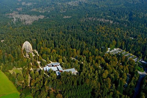 جنگلهای باواریا